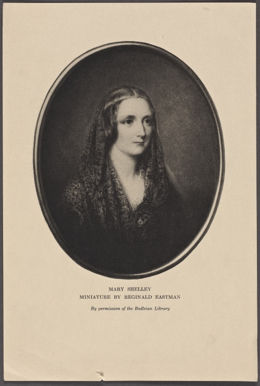 an analysis of mary shelley s Mary shelley makes full use of themes that were popular during the time she wrote frankensteinshe is concerned with the use of knowledge for good or evil purposes, the invasion of technology into modern life, the treatment of the poor or uneducated, and the restorative powers of nature in the face of unnatural events.